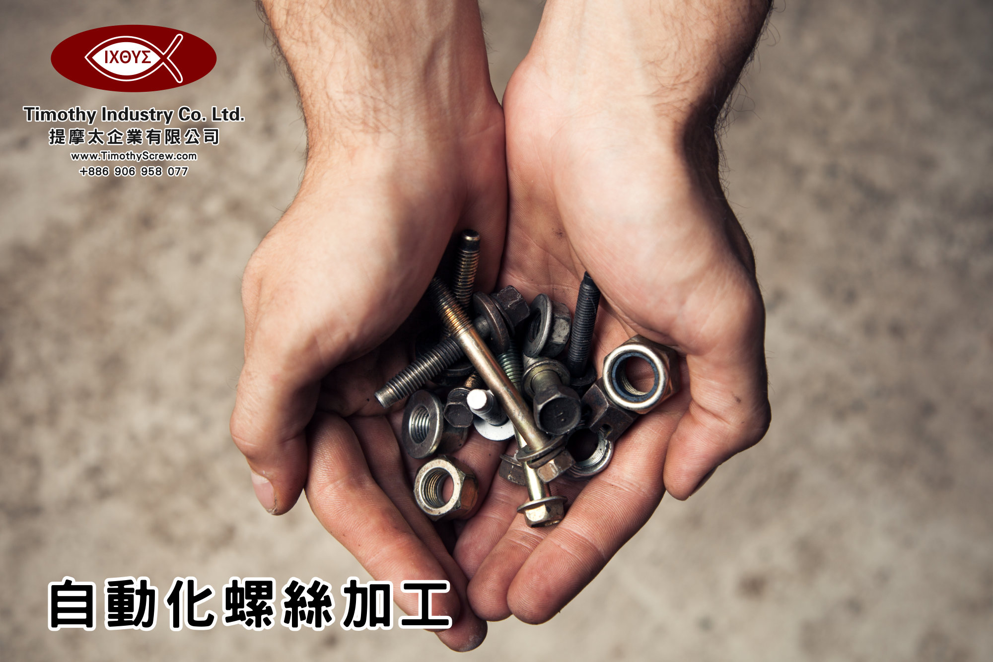 提摩太企業有限公司 Timothy Industry Co Ltd 自動化螺絲加工 車床部 銑床部 台灣自動化螺絲加工 螺絲製造 A28